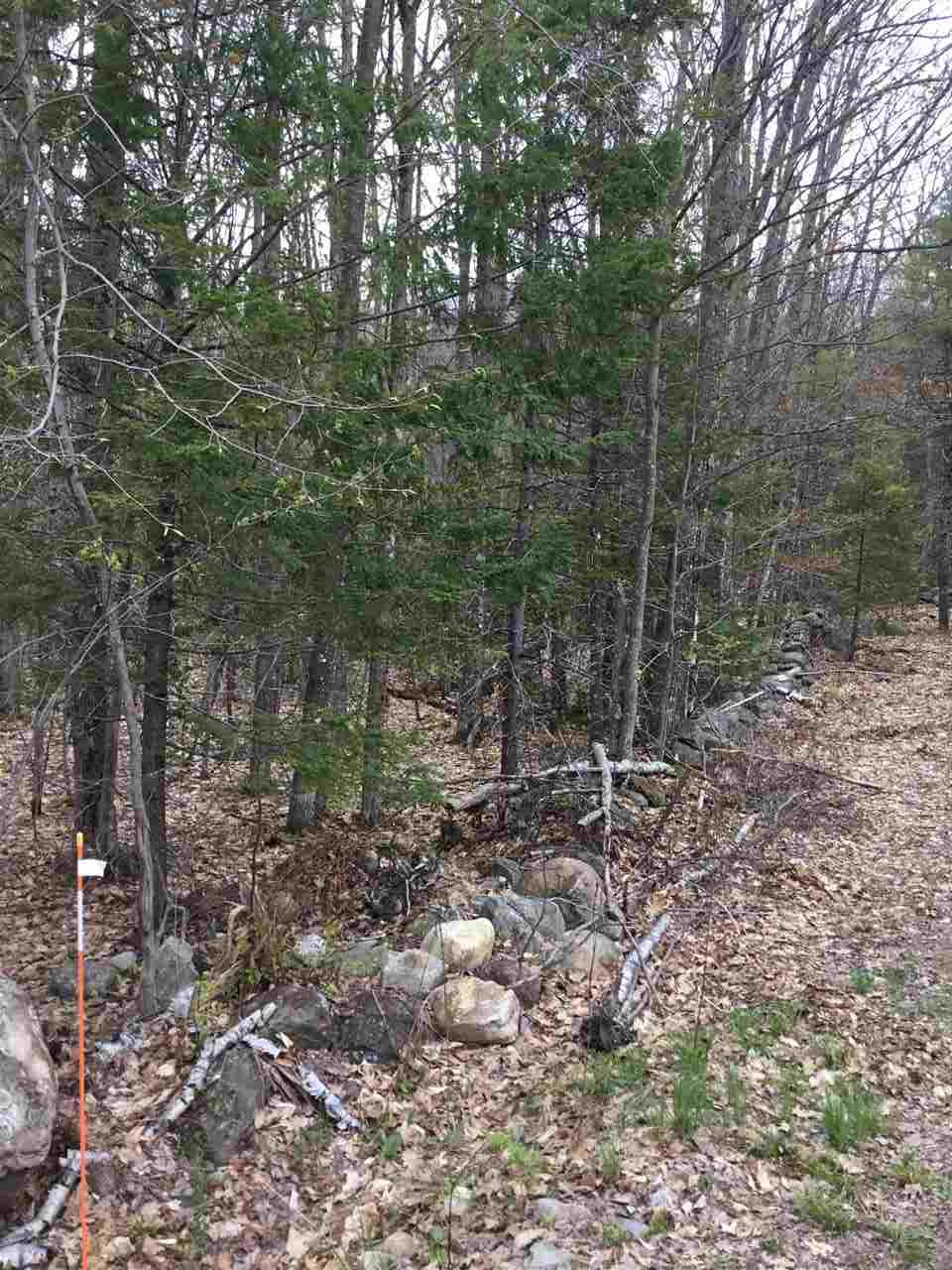 WOLFEBORO NH Land / Acres for sale