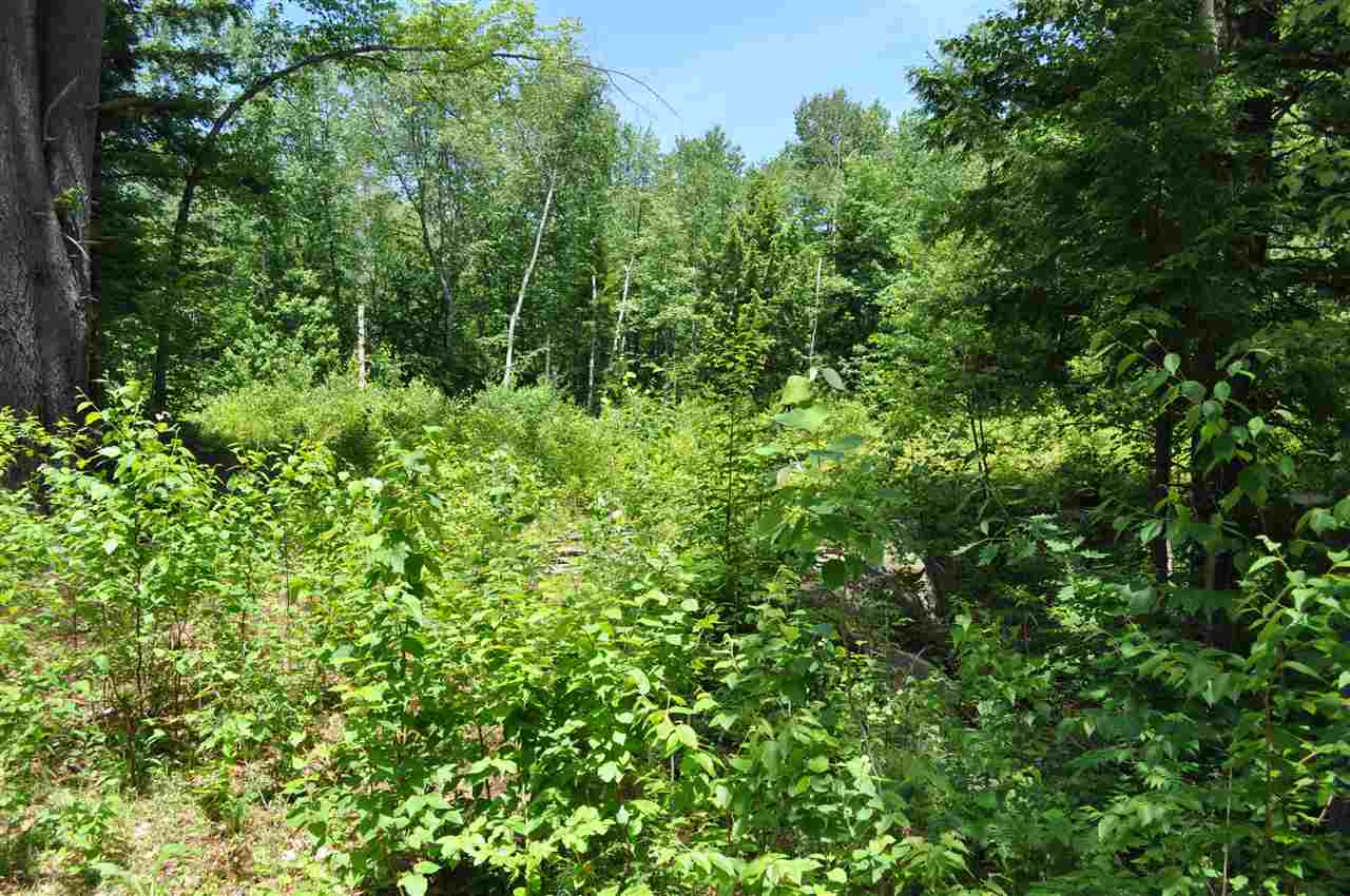 UNITY NH LAND  for sale $$26,000 | 3.5 Acres  | Price Per Acre $0