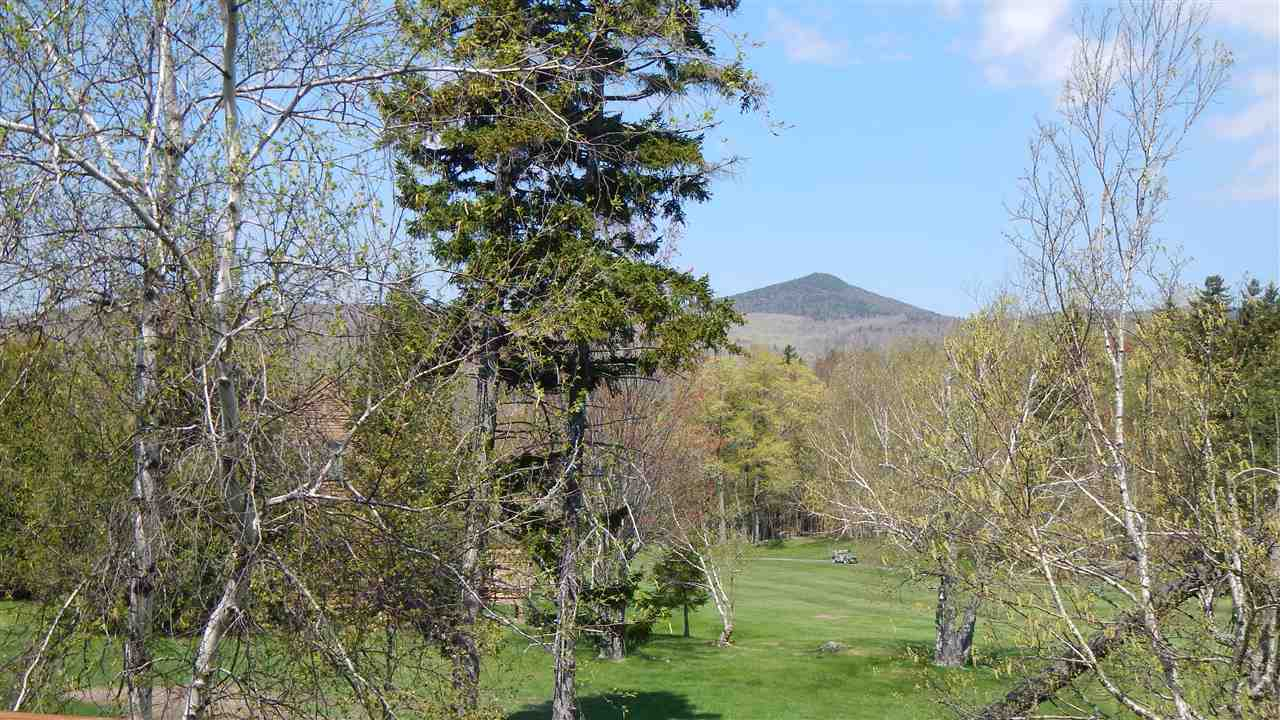 Mount-Snow-Real-Estate-4634411-2