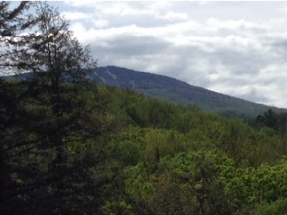 Beautiful land with views of Stratton's...