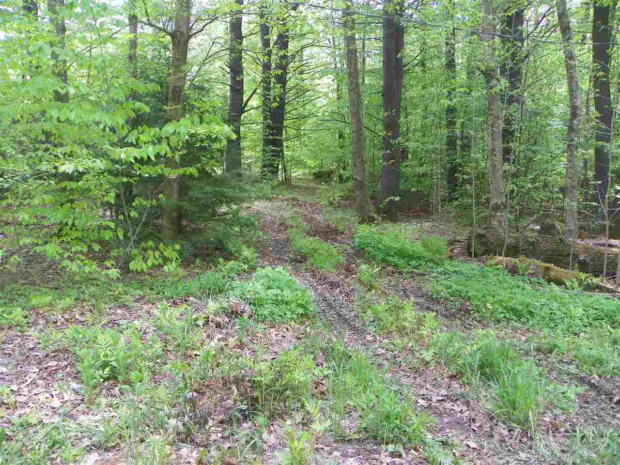ALSTEAD NH LAND  for sale $$80,000 | 29 Acres  | Price Per Acre $0