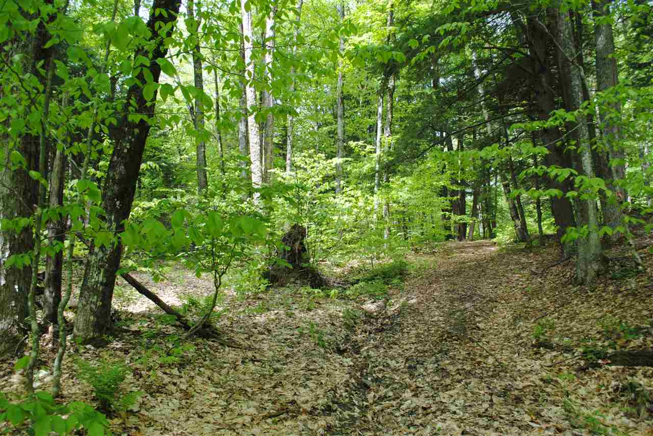 Beautiful and completely private land offering a...