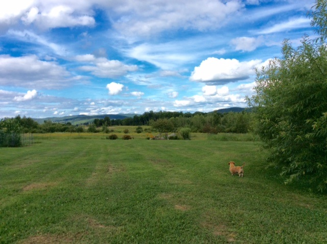 LEBANON NH LAND  for sale $$175,000 | 7.85 Acres  | Price Per Acre $0