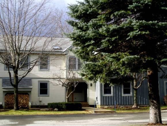 88C Greenspring Road 88C, Dover, VT 05356
