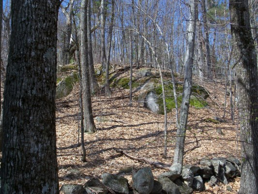 BROOKFIELD NH LAND  for sale $$99,900 | 97.00 Acres  | Price Per Acre $0