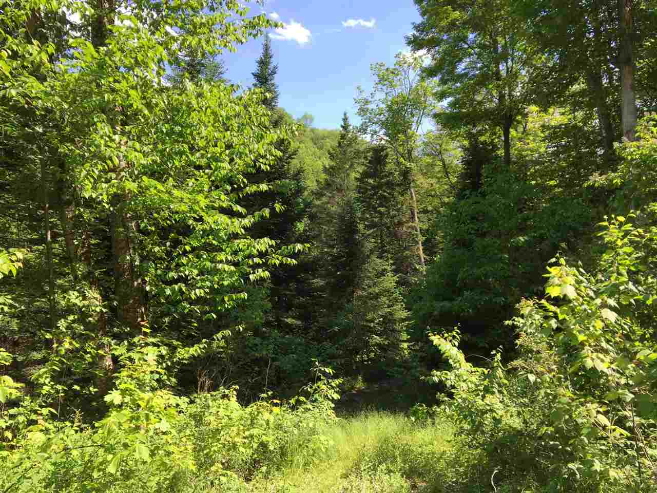 2500 Bear Notch Road, Corinth, VT 05039
