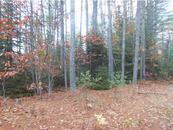EFFINGHAM NH  LAND  for sale $119,000