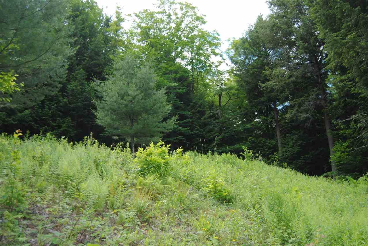 Woodstock VT Land for sale