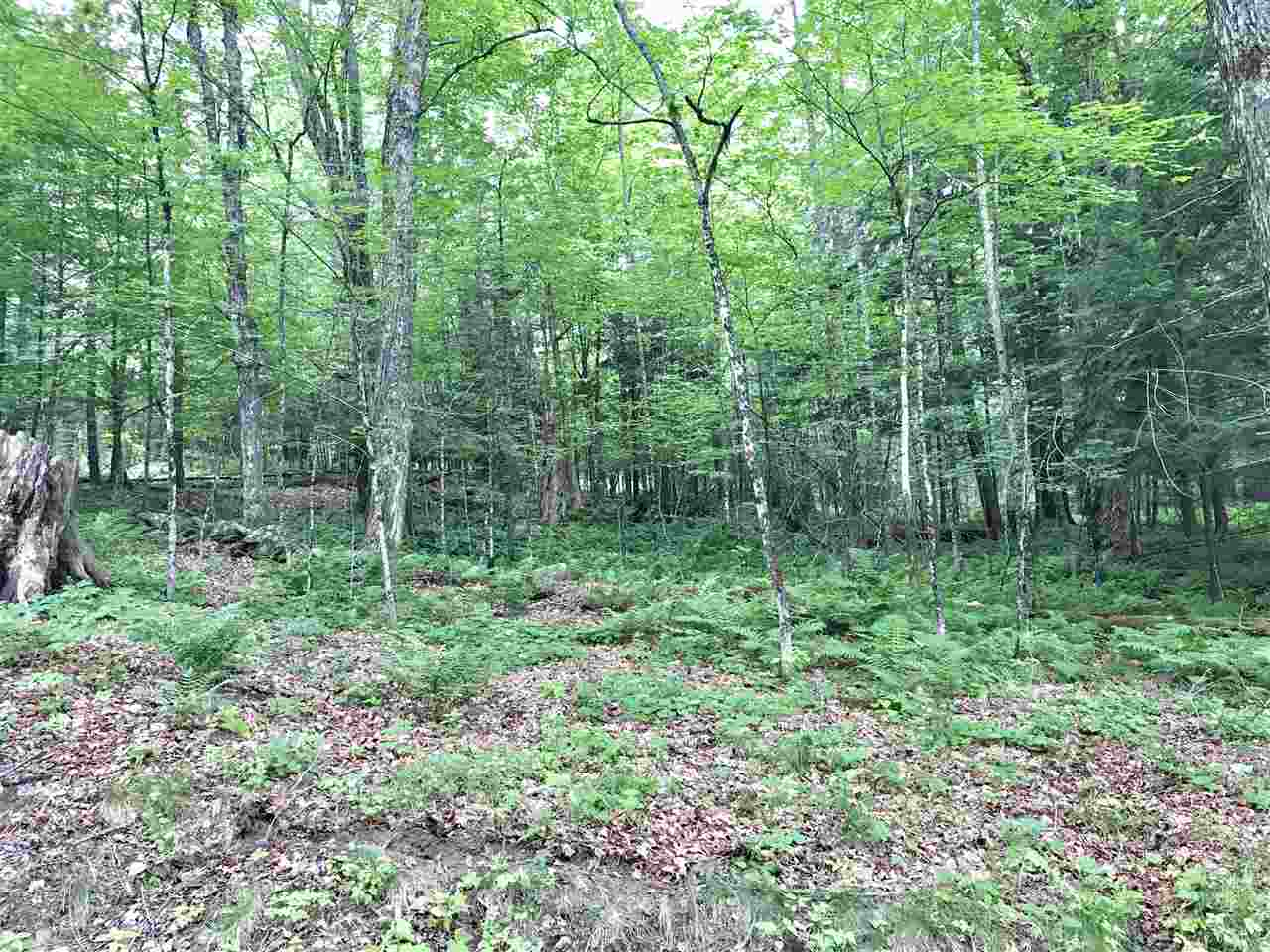 VILLAGE OF ETNA IN TOWN OF HANOVER NH Land  for sale $$399,000 | 25 Acres  | Price Per Acre $0  | Total Lots 2