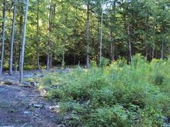 Unity NH 03603 Land  for sale $List Price is $29,900