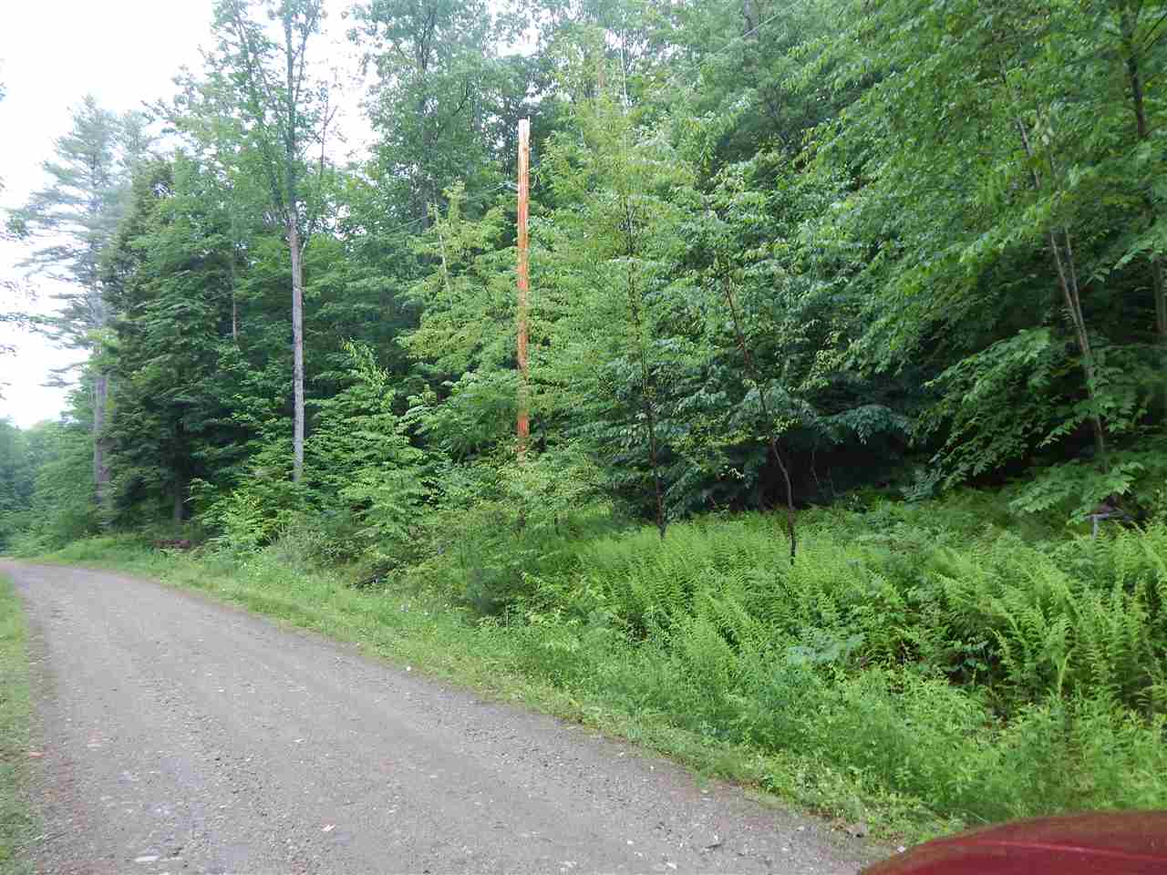 Lot #3 Davidson Hill Road, Chester, VT 05143