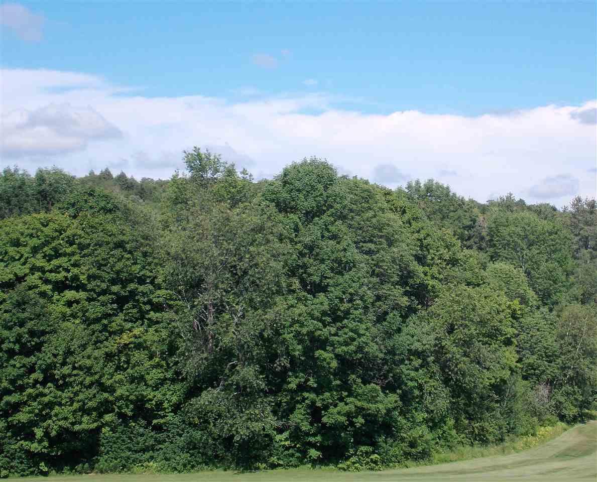 Boone Road, Andover, VT 05143