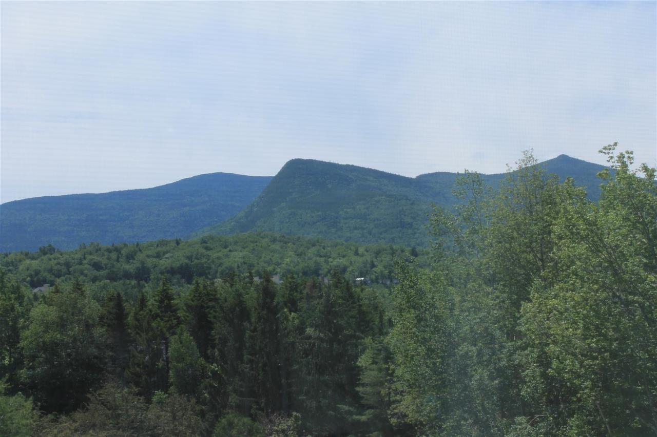 28 Packards Road, Unit 538 538, Waterville Valley, NH 03215