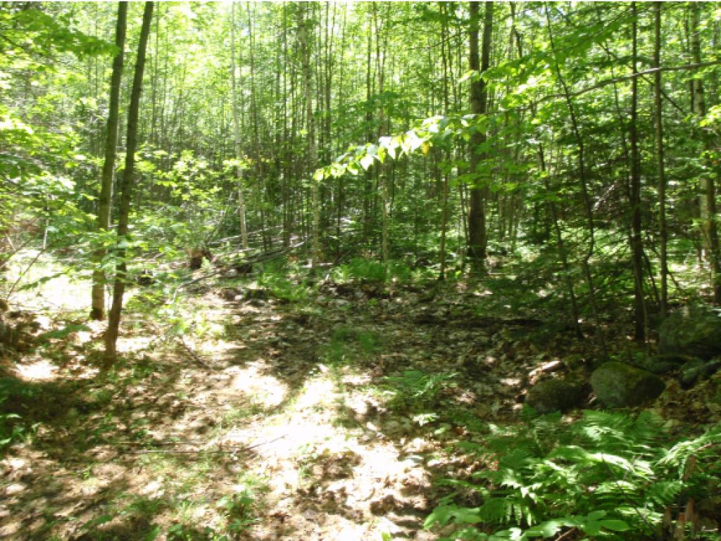 CANAAN NH LAND  for sale $$37,500 | 3 Acres  | Price Per Acre $0