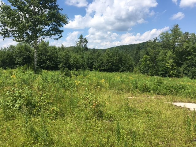 Jamaica Vt , private secluded 2 acre lot, cleared...