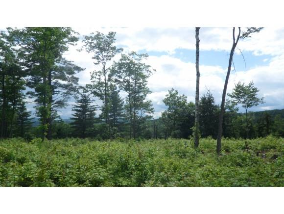 THETFORD VT LAND  for sale $$55,000 | 17.1 Acres  | Price Per Acre $0  | Total Lots 2