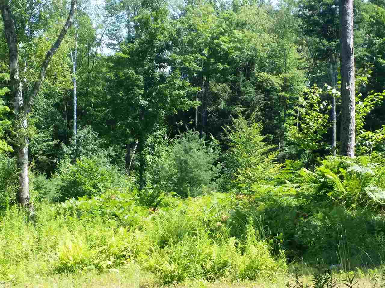 THETFORD VT LAND  for sale $$79,000 | 18.2 Acres  | Price Per Acre $0  | Total Lots 2