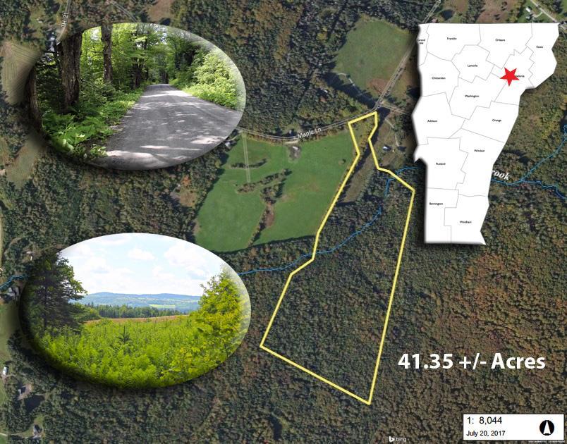 WALDEN VTLAND  for sale $$65,000 | 41.35 Acres  | Price Per Acre $0  | Total Lots 2