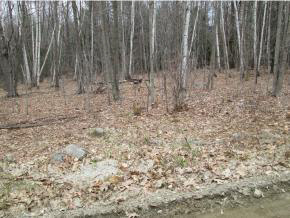 lot #7 Davidson Hill Rd, Chester, VT 05143