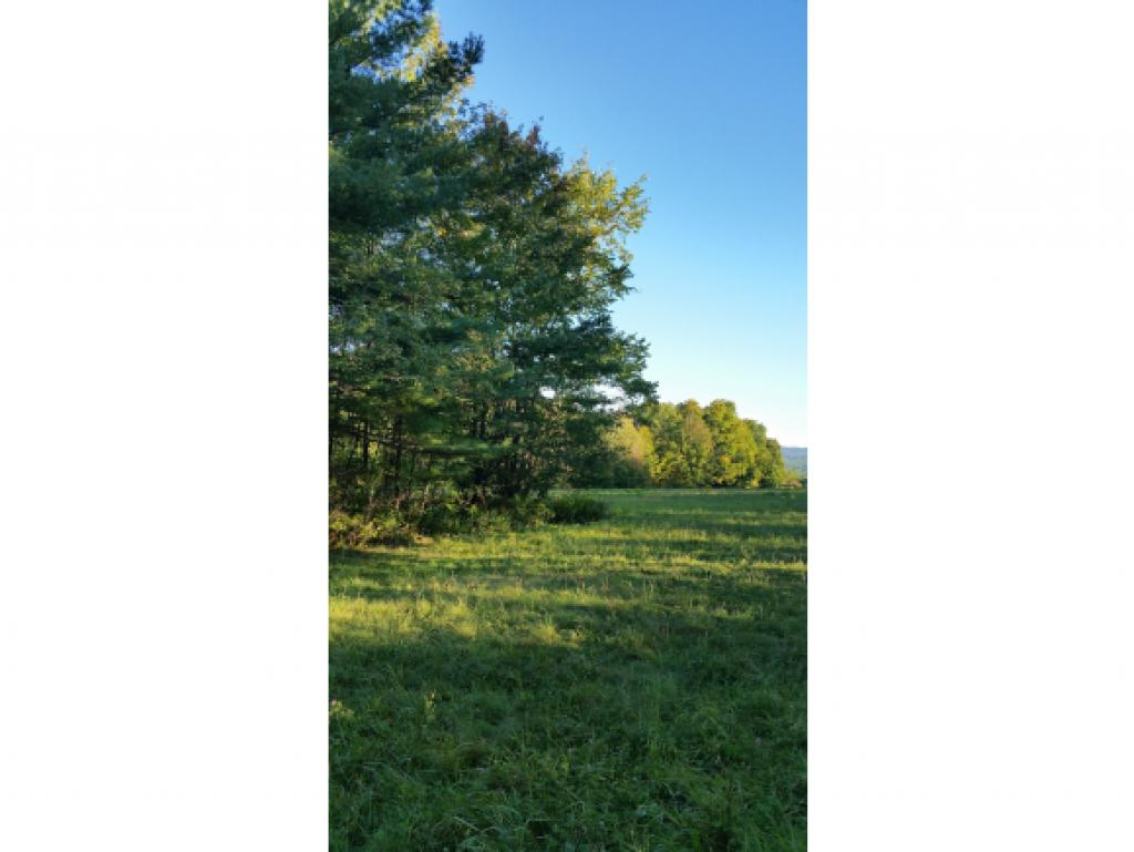 NEWPORT NH LAND  for sale $$38,000 | 8.5 Acres  | Price Per Acre $0