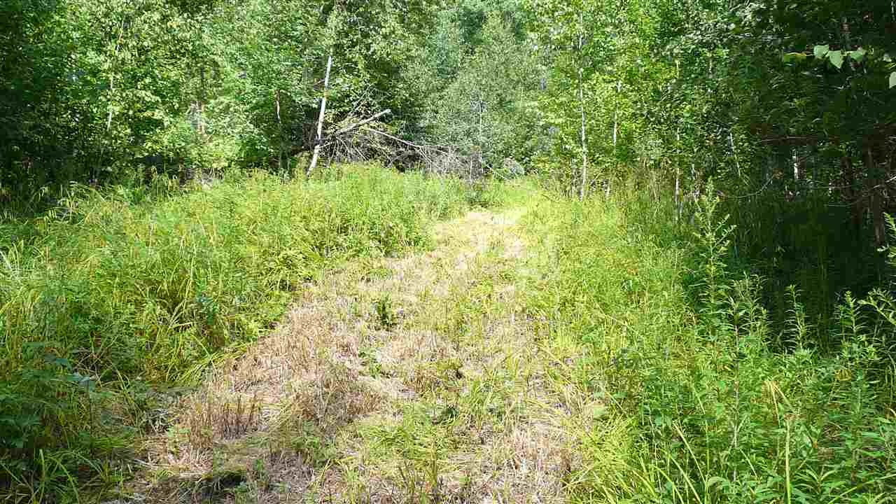 NEWPORT NH LAND  for sale $$48,900 | 16.31 Acres  | Price Per Acre $0