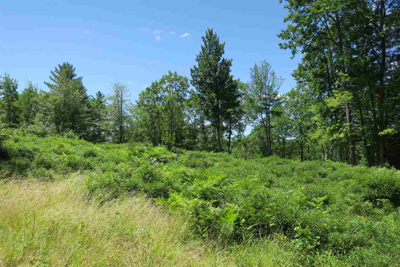 Beautiful 17.05 acres lot located in a desirable neighborhood. Seasonal mountain view with some clearing.  It offers privacy, yet it is close to all the amenities offered by the Mount Washington Valley such as skiing, hiking, swimming, climbing, shopping and more.  This is a great location to build your primary home or your vacation home!