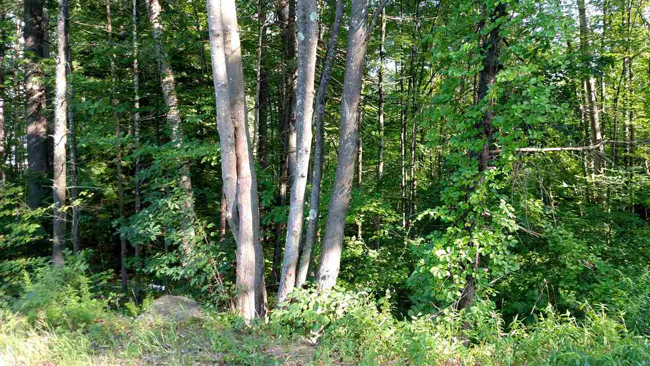 BOSCAWEN NH LAND  for sale $$25,000 | 0.68 Acres  | Price Per Acre $0