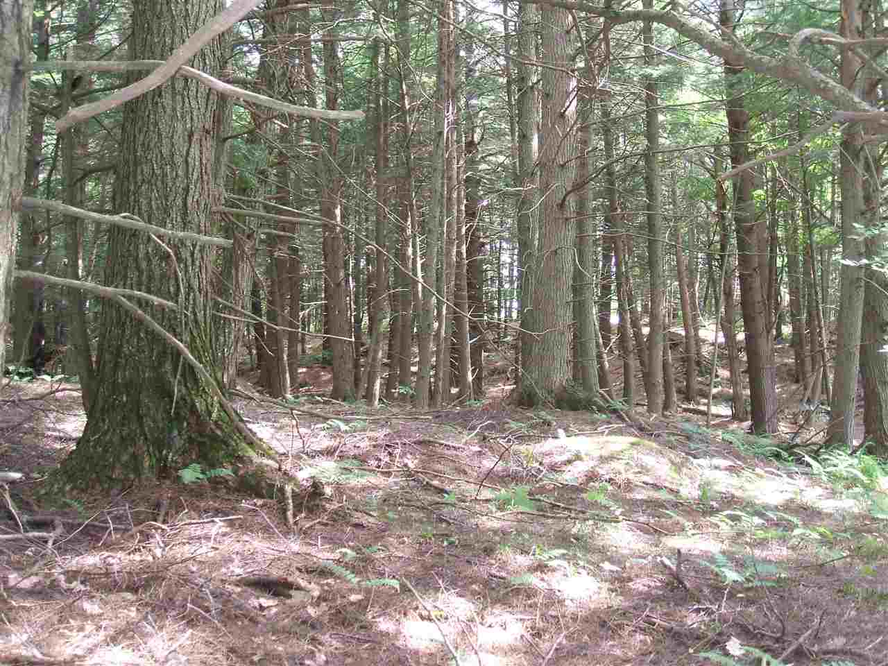 VILLAGE OF QUECHEE IN TOWN OF HARTFORD VT LAND  for sale $$40,000 | 0.97 Acres  | Price Per Acre $0