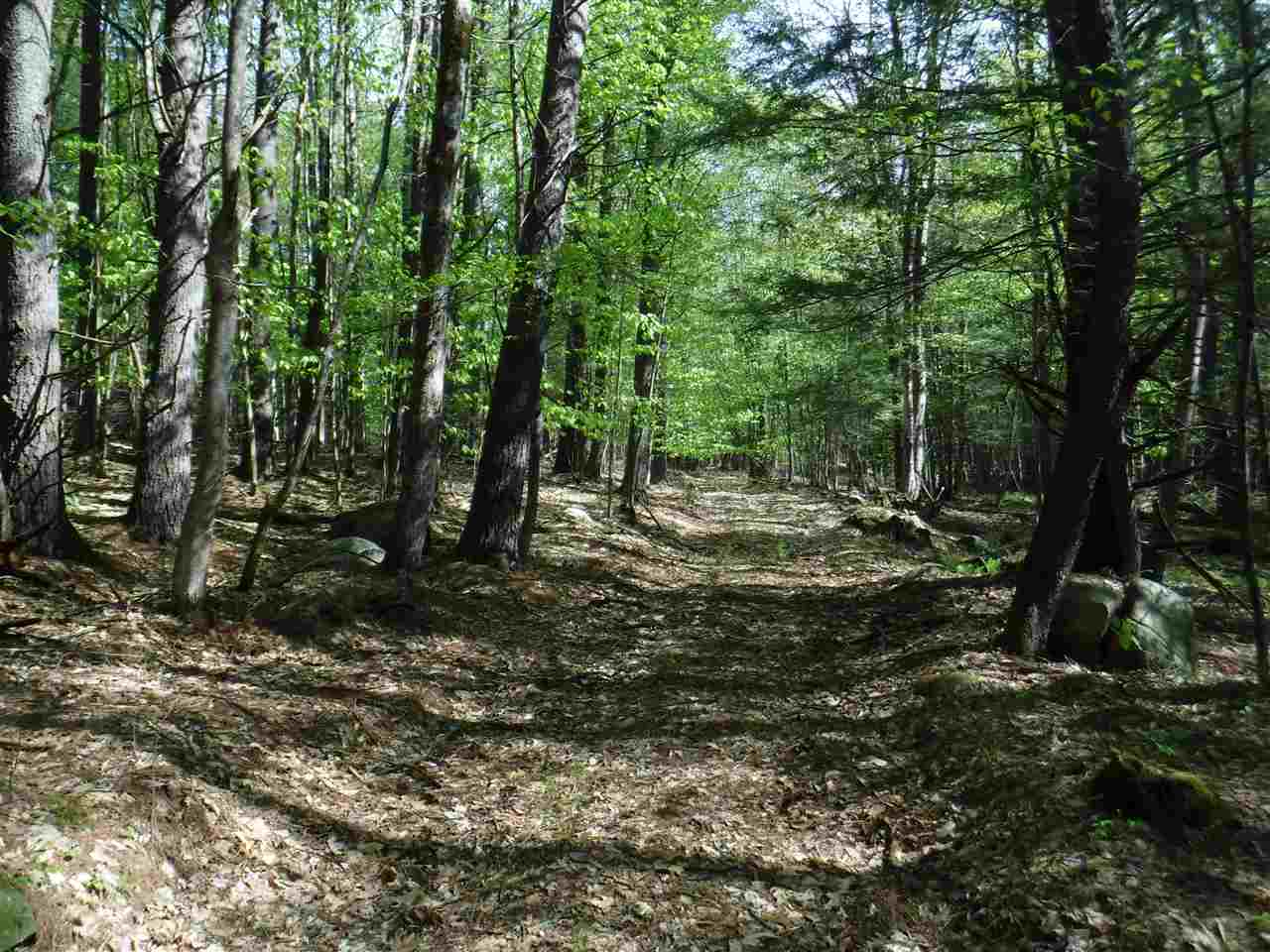SPRINGFIELD VT LAND  for sale $$69,900 | 56 Acres  | Price Per Acre $0  | Total Lots 3