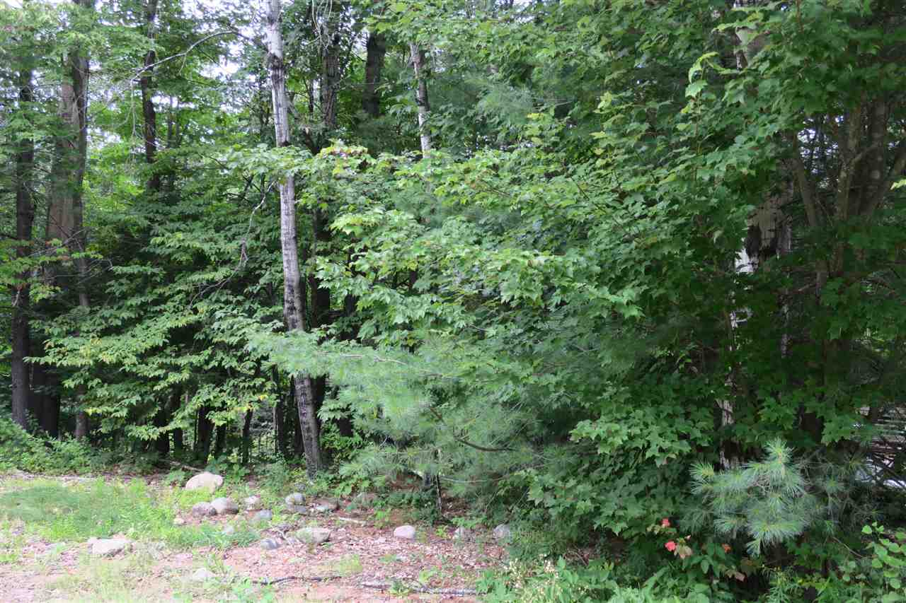 0.81 Acre lot with septic and drilled well already on site.  Close to Attitash Bear Peak, Bretton Woods and a short drive to North Conway Village offering many shops and restaurants.  Currently there are two sheds and a manufactured home on the lot, remodel the existing home, or build new.  Great location for year around living or for a second home.