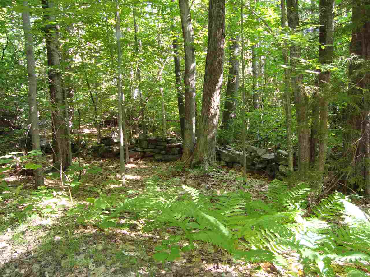 Acworth NH 03601 Land  for sale $List Price is $14,900