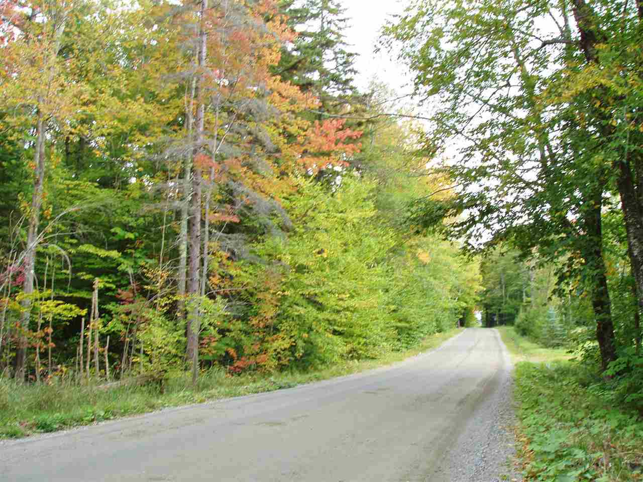 This level, wooded parcel offers a peaceful site...