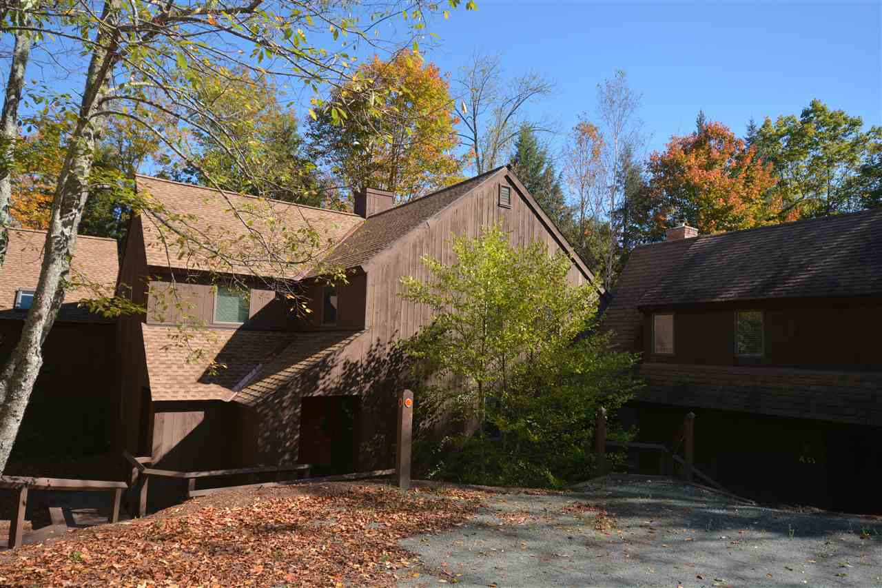 Village of Eastman in Town of Grantham NH  03753 Condo for sale $List Price is $140,000
