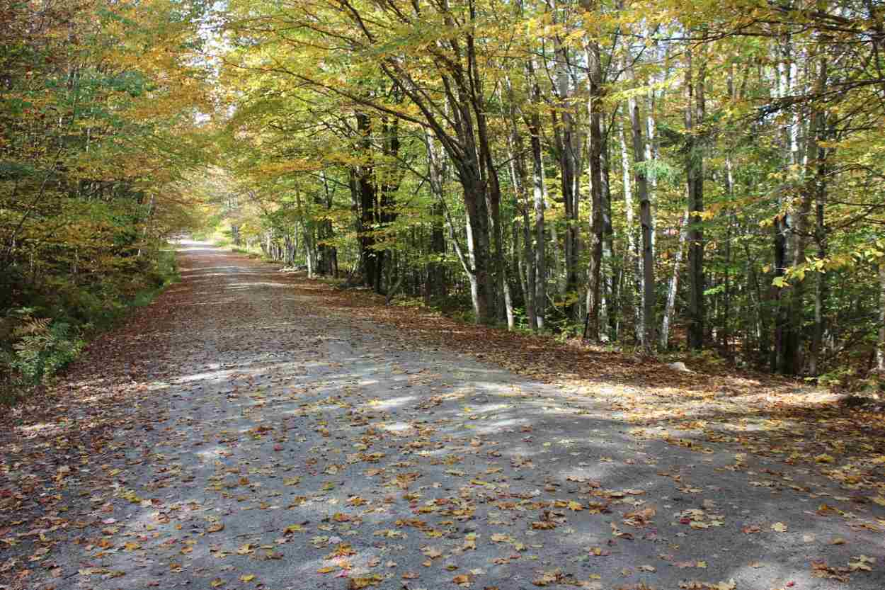 Own a quiet piece of Vermont in a secluded forest...