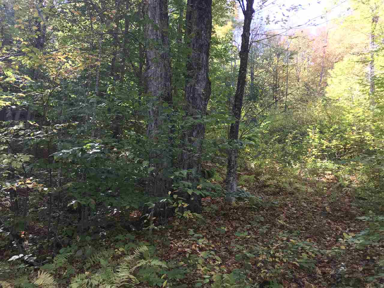 image of Newbury NH Land   0.8 Acres