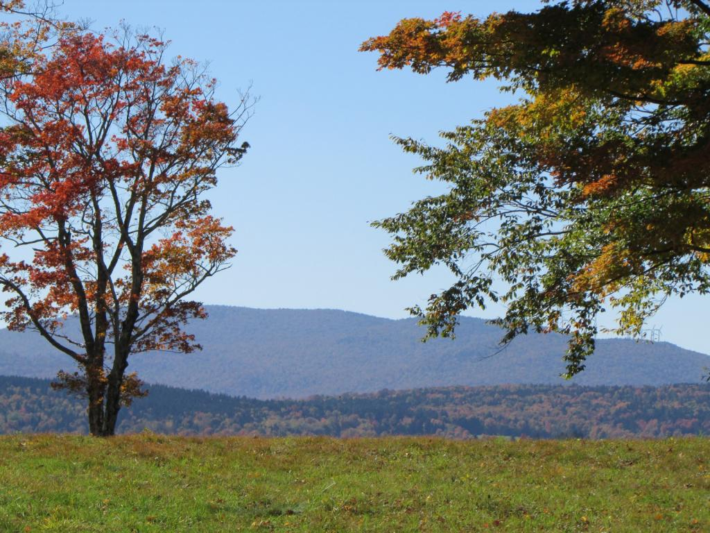 Beautiful west facing tranquil parcel of Vermont...