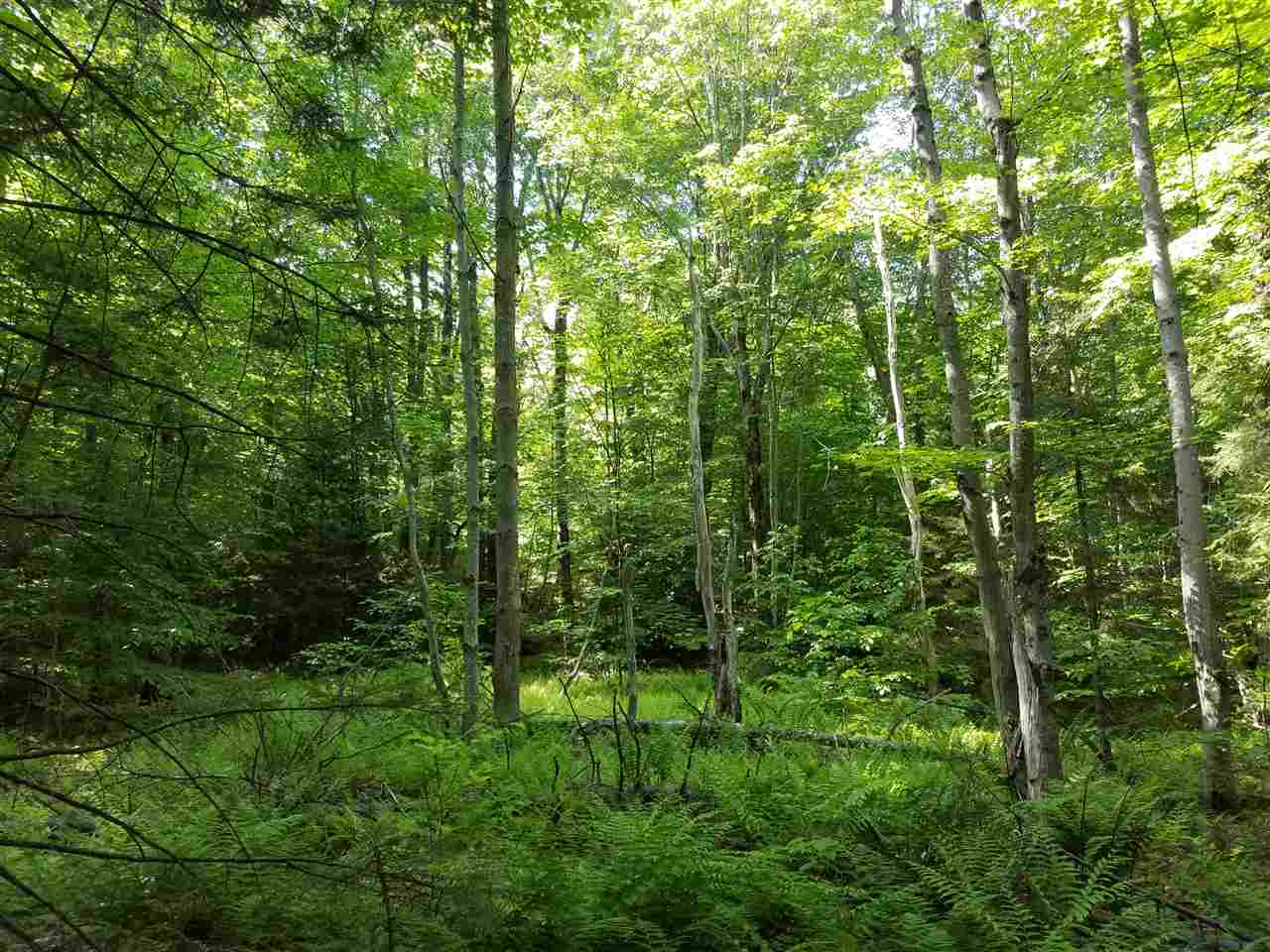 This privately situated thirteen acre lot offers...