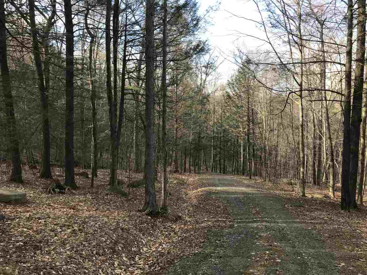 95 plus or minus acre parcel with extensive town...