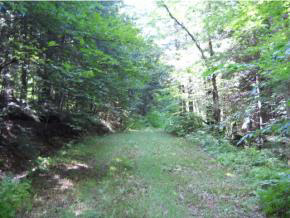 84.7 + or - acre wooded tract with $ubstantial...