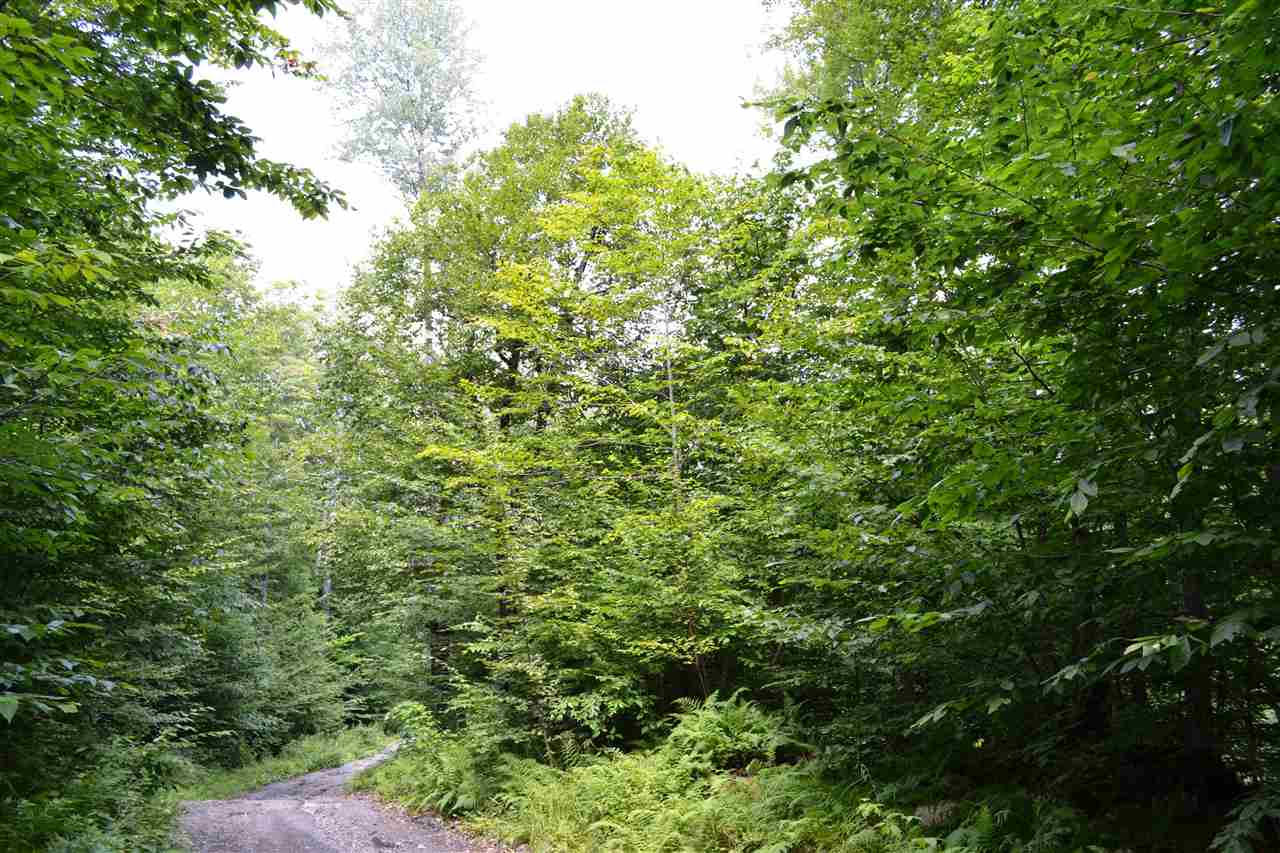 This 58+ acre parcel is awaiting those buyers who...