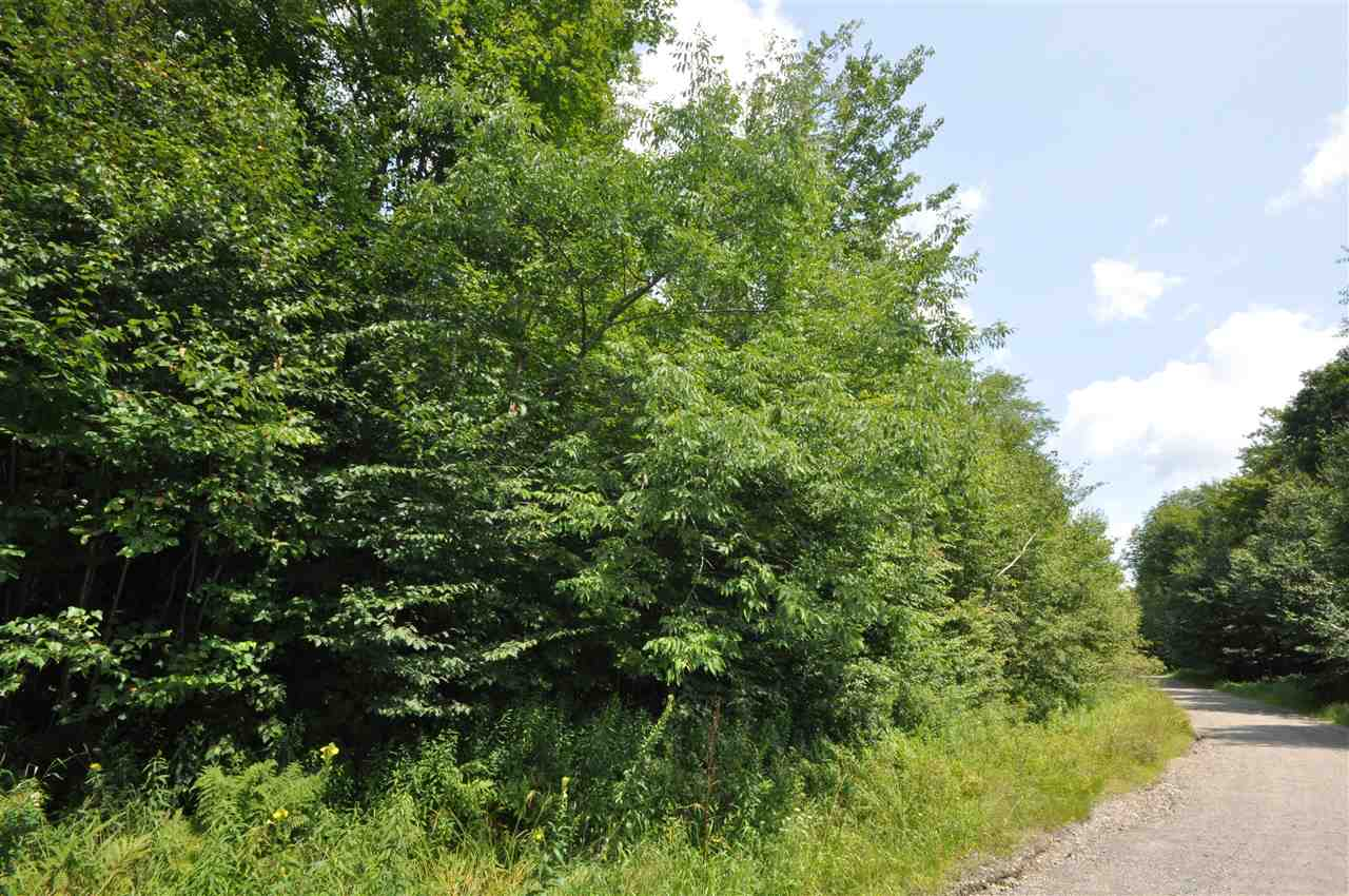 This 3+ acre lots offers the convenience of...