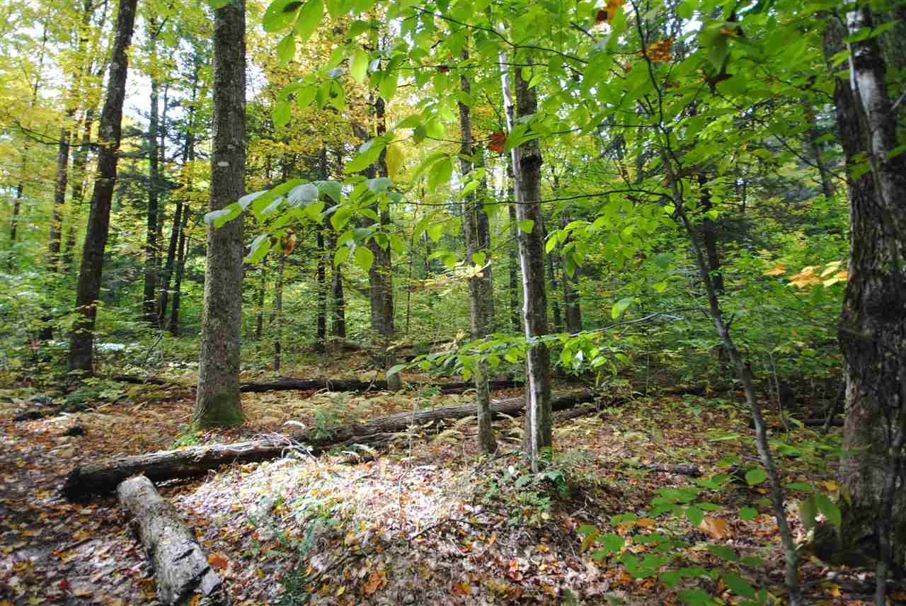 Perfectly secluded lot in West Wardsboro. 17+...