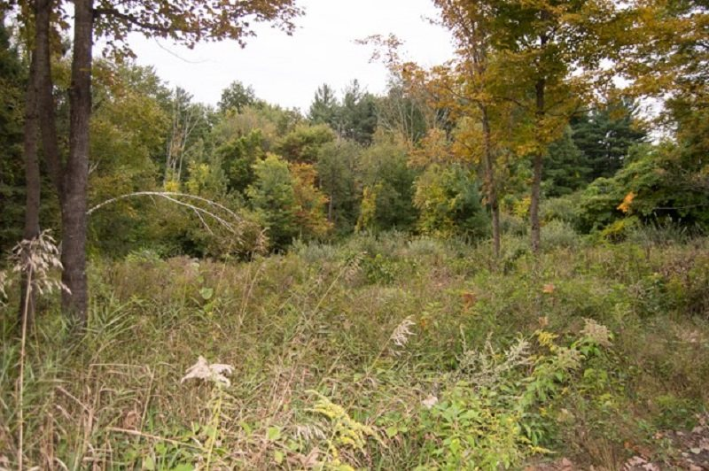 Merrimack                                          NH Real Estate Property Photo