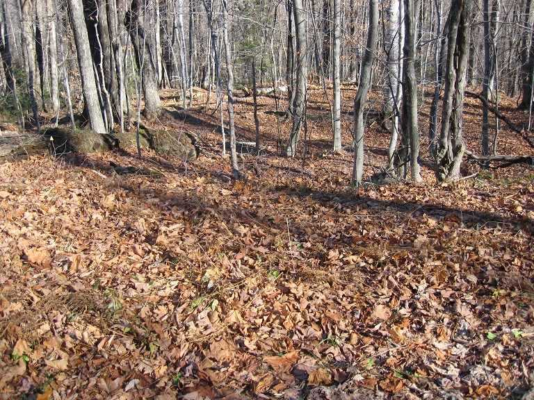 Beautiful 1 acre building lot located in Timber...