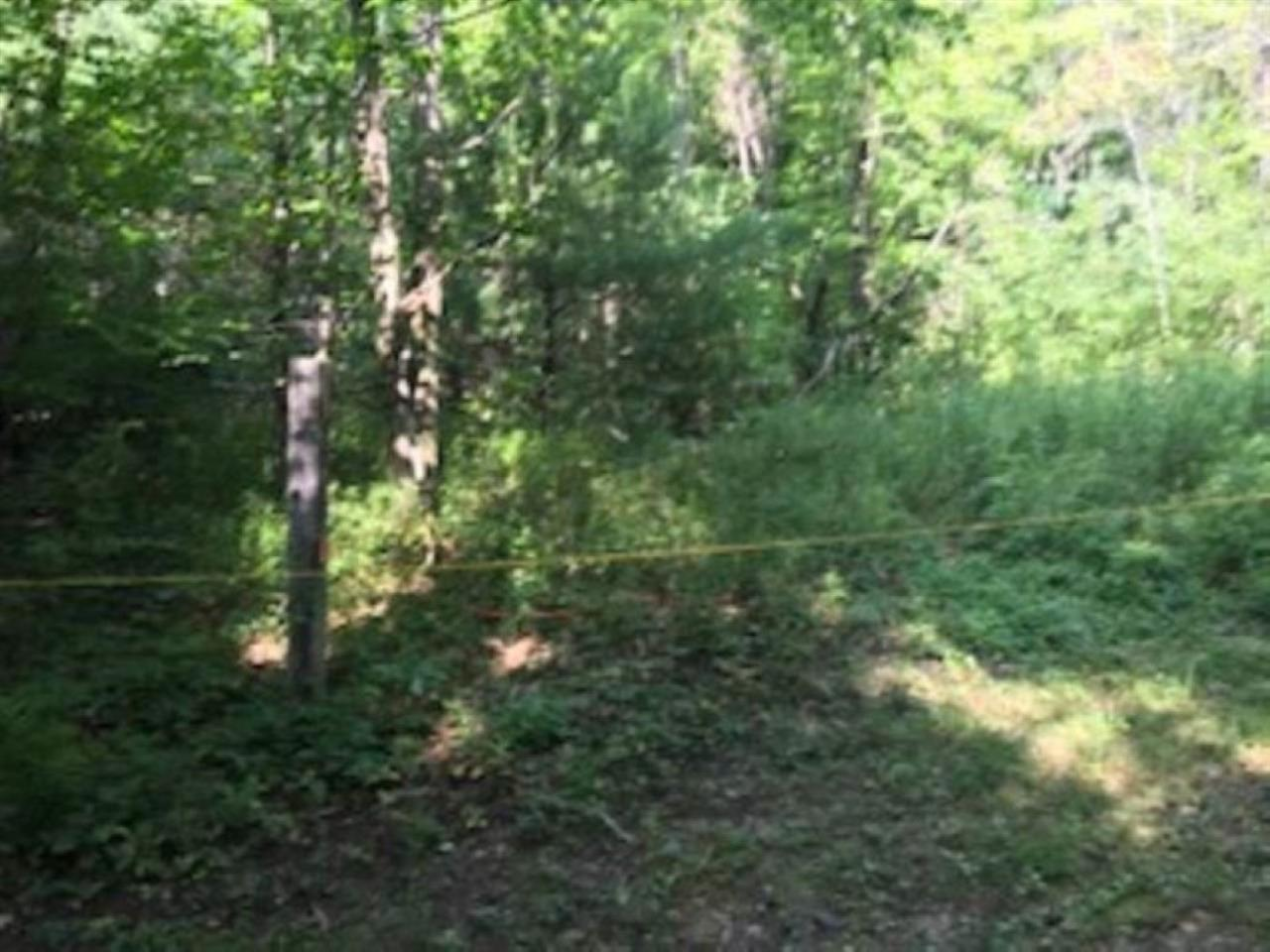39.9 surveyed country acres with paved frontage...