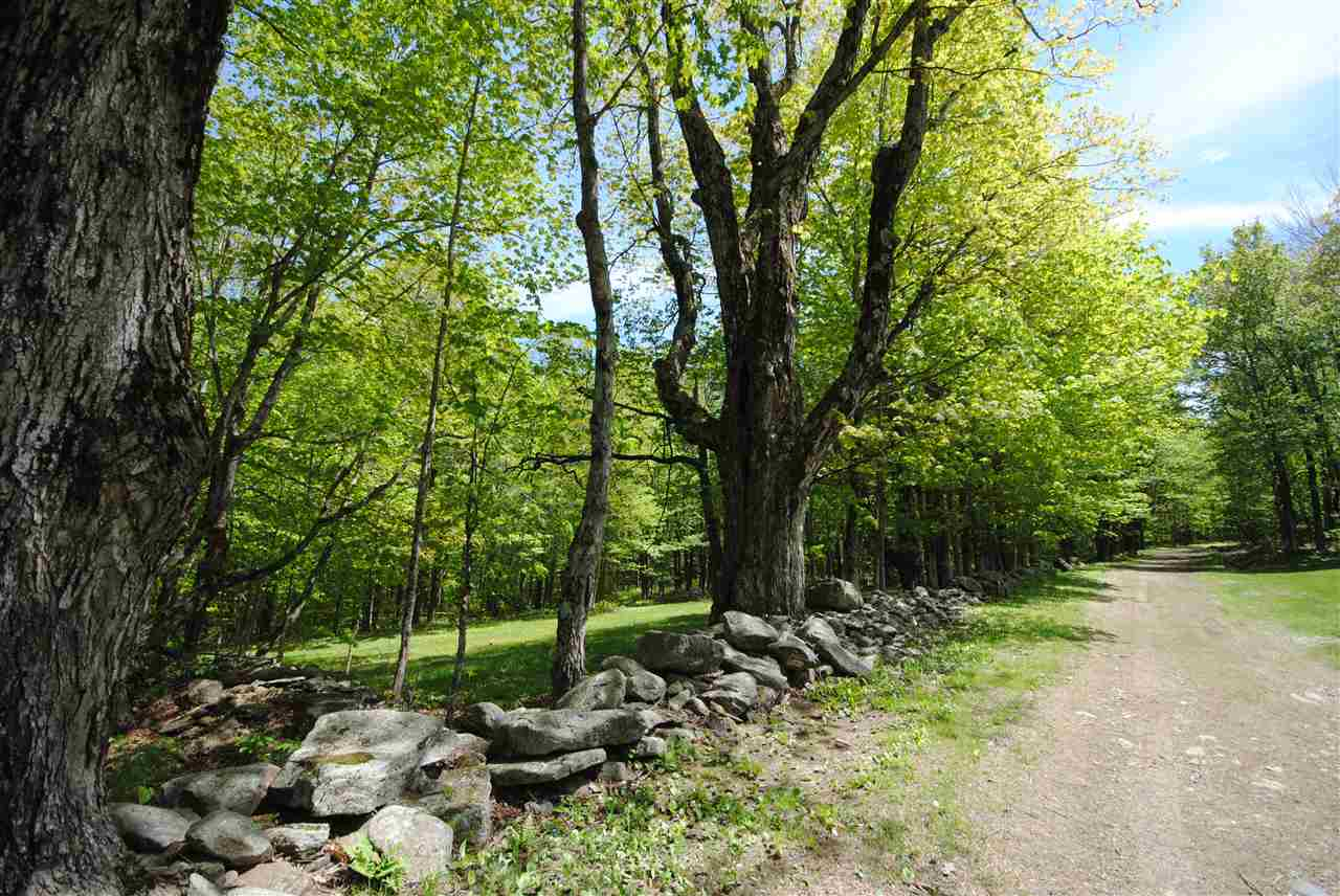 Wonderful 7+ acre lot on Fuller Hill Rd in...