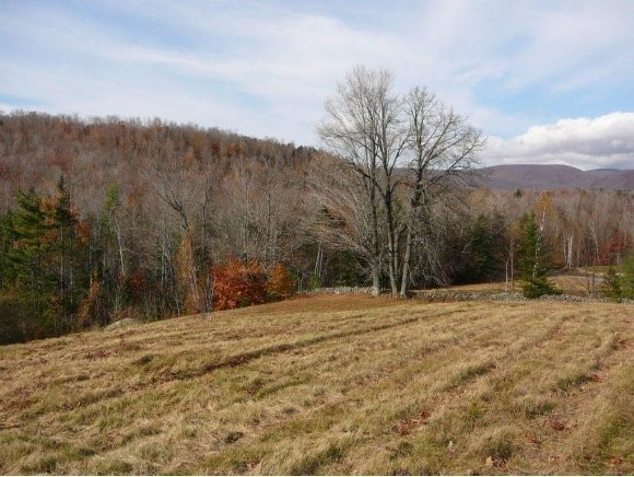 DORCHESTER NH LAND  for sale $$79,500 | 10.6 Acres  | Price Per Acre $7,500  | Total Lots 2