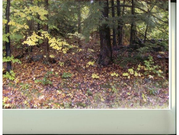 ALSTEAD NH LAND  for sale $$27,500 | 5 Acres  | Price Per Acre $6,900