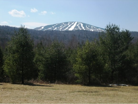 WINHALL VT LAND  for sale $$265,000 | 15.20 Acres  | Price Per Acre $0