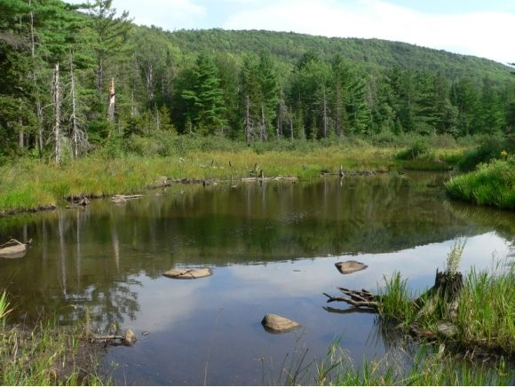 DORCHESTER NH LAND  for sale $$49,900 | 9.8 Acres  | Price Per Acre $5,091  | Total Lots 2